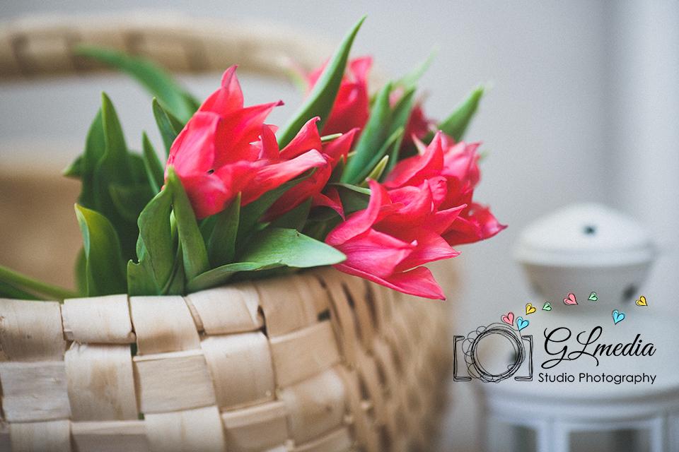 tulipany w koszu sesje wiosenne-1